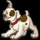 froher hund